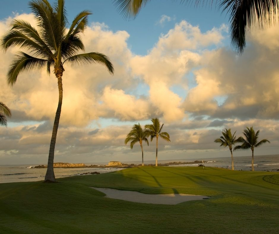 Ocean golf course with palm trees.